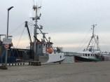 Fischbrötchen am Hafen.