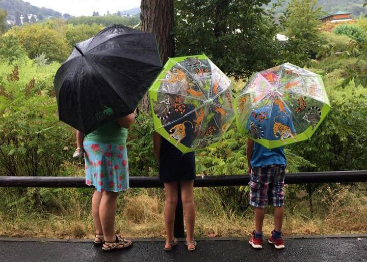 4 Personen mit 3 Regenschirmen schauen in die Natur.