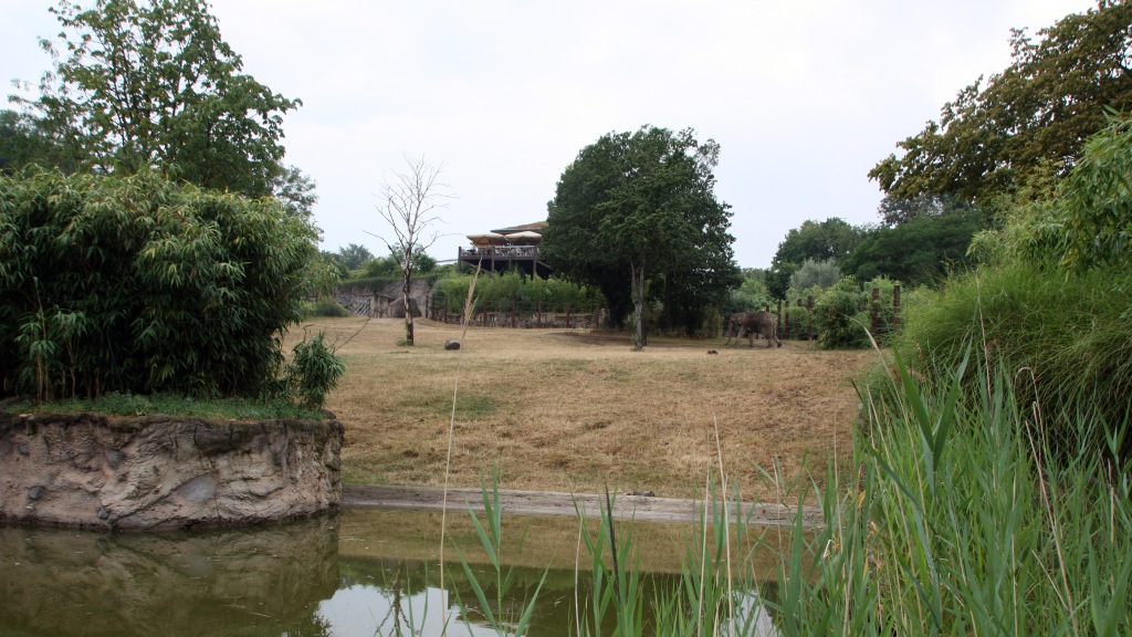 Elefantengehege im Opel-Zoo.