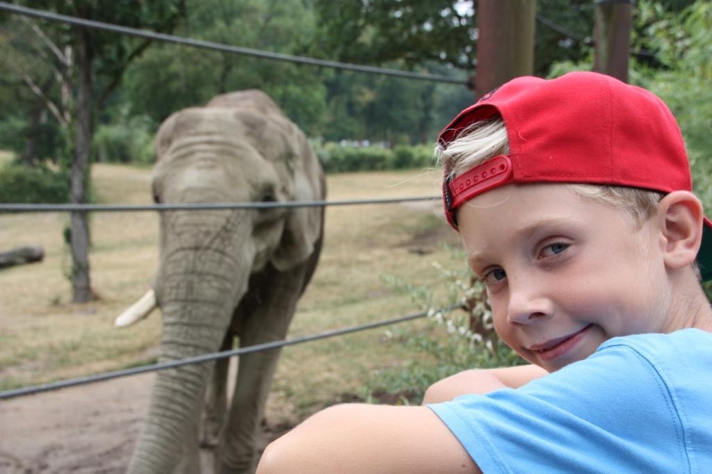 Junge mit roter Schrimmütze steht vor dem Elefantengehege im Opel-Zoo.